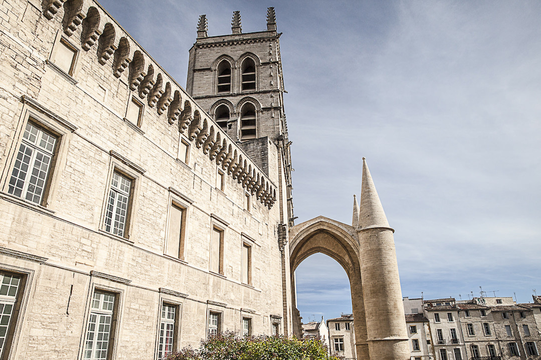 A.Gressin - Cathédrale de Montpellier