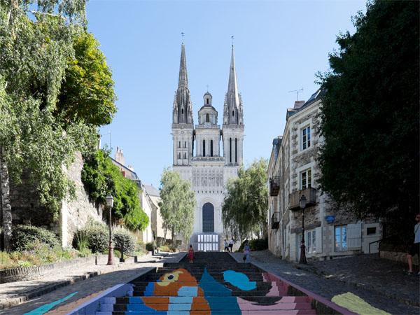 Prise de vue de la Cathédrale Saint-Maurice - Angers